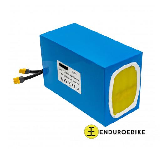 EEB 48V 21,2Ah Boston Swing Battery Pack
